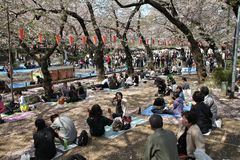 Japan hanami party Stock Images