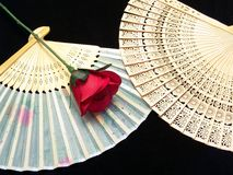 Japan hand fan with rose. Japan wooden fan with a red rose with black background Royalty Free Stock Image