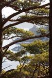 Japan hav i vinter 7 Arkivfoto
