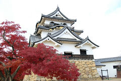 Japan Hikone Castle Lizenzfreies Stockbild