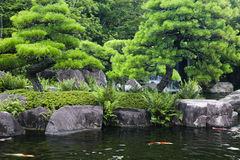 Japan Himeji Himeji Koko-en arbeta i trädgården dammet med Koi Carps Arkivbilder