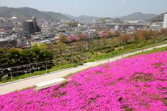 Japan - Himeji Royalty Free Stock Photography