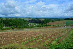 Japan Hokkaido Landscape 2. Japan Hokkaido Island Scenic Landscape royalty free stock image