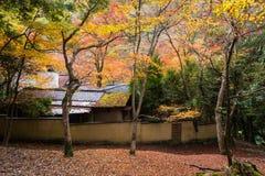 Japan house with autumn tree, Arashiyama. Japanese traditional house surrounded by autumn foliage tree at Arashiyama mountain, Kyoto, Japan. Beautiful scenics Royalty Free Stock Photos