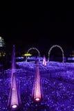 Japan of the illumination royalty free stock photos