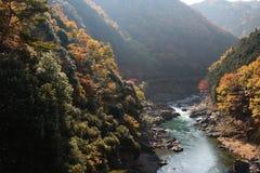 Japan on the Katsura River during the autumn. Season Stock Images