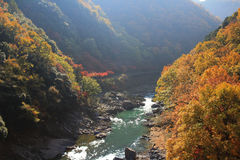 Japan on the Katsura River during the autumn Stock Photos