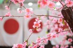 Japan-Kultursymbolflagge und Kirschbl?te lizenzfreie stockfotografie