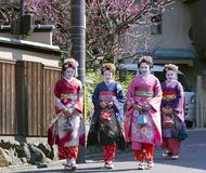 Four nice woman in Maiko kimono dress Stock Photo