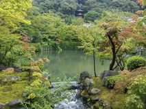 JAPAN, KYOTO, Landscape of beautiful garden. JAPAN, KYOTO, Landscape of beautiful and colorful garden in summer Stock Image