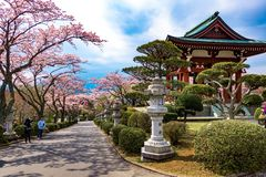 japan lizenzfreie stockfotografie