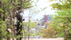 Japan life journey stock video footage