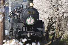 Japan Loco -2 Royalty Free Stock Photos