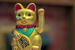 Japan lucky cat or Maneki Neko with Japanese characters mean Goo. D luck and fortune on gold medal on black background royalty free stock photos
