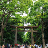 Japan - Maj 25, 2014 Många personer går till och med Torii (port) i ol Fotografering för Bildbyråer