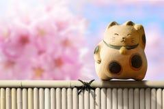 Japan Maneki Neko or beckoning cat, mascot of lucky and money, P. Resent over pink cherry blossom sakura and bamboo fence royalty free stock photo