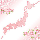 Japan map with cherry blossoms illustration. Royalty Free Stock Image