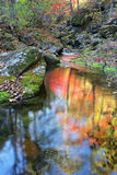 Japan-Meer. Herbst. 9 Lizenzfreies Stockbild