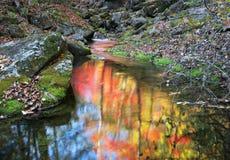 Japan-Meer. Herbst. 9 Stockfotografie