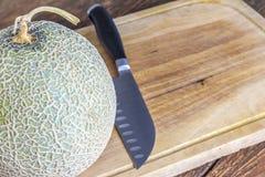 Japan melon på träbrädeställe på tabellen royaltyfri fotografi
