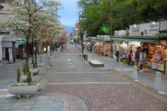 japan Nara Zdjęcie Stock