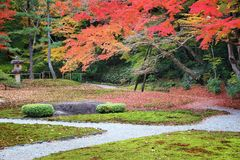 japan nara arkivbilder