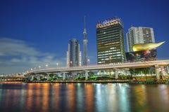 japan nocnego nieba Tokyo drzewny widok Zdjęcie Royalty Free