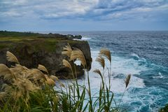 Japan Okinawa seaside cliffs. This photo was taken in Okinawa`s Manza mou, Japan。Manza mou is Okinawa count as one of the top landscape, located on a cliff Stock Image