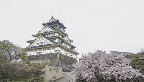 Japan Osaka castle with cherry blossom. Japanese spring view. Stock Images
