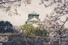 Japan Osaka slott med den körsbärsröda blomningen Japansk vårsikt , v Arkivfoto