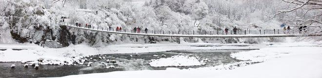 Japan på vintern Royaltyfri Bild