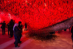 Japan paviljong, 56th Venedig biennale Royaltyfri Bild