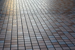 Japan Pedestrian Walkway Royalty Free Stock Photo