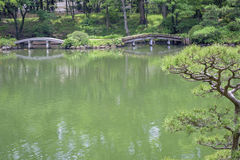 Japan pond with bridges and trees Stock Photos