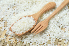 Japan rice on wooden spoon Royalty Free Stock Image