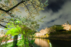 Japan`s cherry blossom season. Kyoto, Japan on the Okazaki Canal during the spring cherry blossom season Royalty Free Stock Images