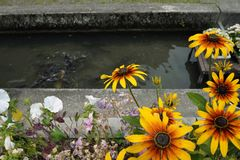 Japan`s Secret Garden and river royalty free stock photo