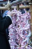 `Omikuji` sacred lot which a fortune. In Japan ,sacred lot which a fortune called `Omikuji` is written,after reding is ties in the place prepared in the shrine royalty free stock images
