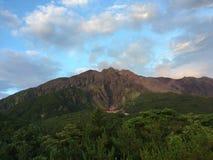 Japan sakura sakurashima mount volcanic could. Volcanic could tree green Stock Image