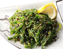 Free Japan Salad On A Plate Royalty Free Stock Photo - 6500745