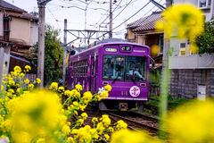 Japan scenic train Stock Photos