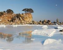 Japan sea. Island 2 Stock Images