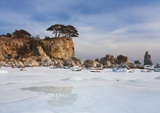 Japan sea.winter Arkivbilder