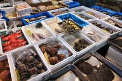 Japan seafood Stock Photo