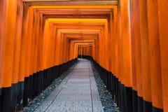 Japan shrine, red gates. Torii gates in Fushimi Inari Shrine, Kyoto, Japan Stock Photo
