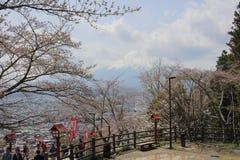 Japan in spring ,Cherry blossom Sakura Stock Photos