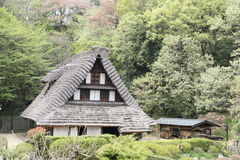 Japan style building Royalty Free Stock Photo