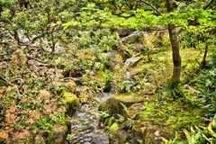 Japan style garden Royalty Free Stock Photo