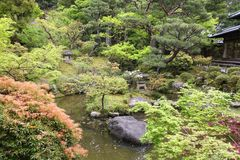 Japan style garden Royalty Free Stock Photos