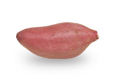Japan sweet potato isolated with white background. Japan sweet potato isolated on white background Stock Image